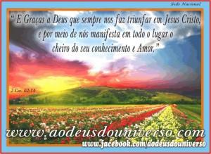 Campo Florido - Deus no usa para levar seu amor - msg facebook Igreja Ao Deius do Universo - Pr. Daniel Strelle
