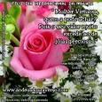 Amamos estar na Casa de Deus, pois neste Lugar Acontecem Coisas Maravilhosas.  A Paz do Senhor, Em um mundo conturbado onde as convivências são conflituosas, encontramos nas Mulheres Virtuosas […]